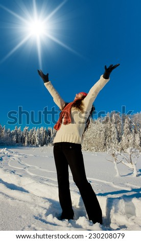 Under the Sun Near Snowy Trees  - stock photo