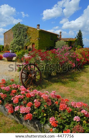 Under the Tuscan Sun - Rural environment - stock photo