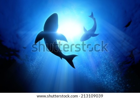 Under the waves circle two great white sharks. - stock photo
