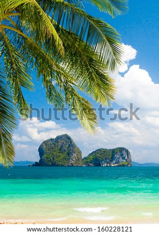 Under Trees Jungle and Sea  - stock photo