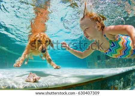 Swimming pool family stock images royalty free images vectors shutterstock for How to train your dog to swim in the pool