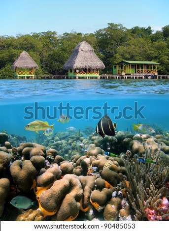 Underwater and surface view with bungalows over the sea and coral reef with tropical fish, Caribbean, Bocas del Toro, Panama - stock photo