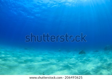 Underwater background in the sea - stock photo