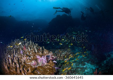 Underwater blue sea  - stock photo