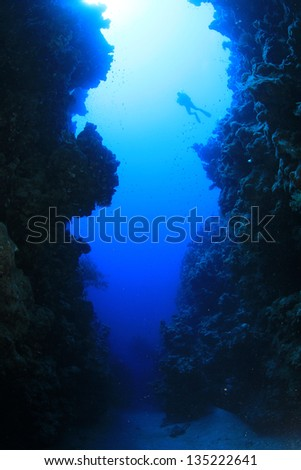 Underwater Canyon with Scuba Divers - stock photo
