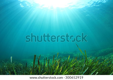 Underwater Ocean - stock photo