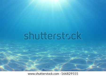 Underwater Ocean Background Photo - stock photo