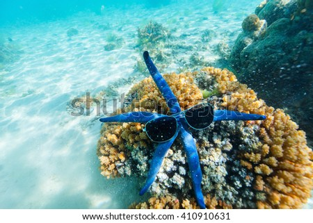 Underwater photo of blue star fish with sun glasses at tropical coral reef - stock photo