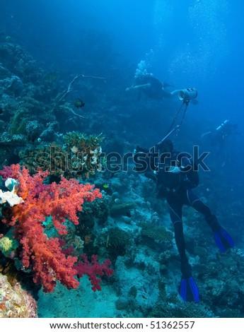 Underwater photographer near coral reef - stock photo