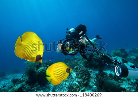 Underwater Photographer scuba diving with camera on coral reef in ocean - stock photo