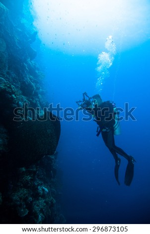 underwater photography photographer diver scuba diving bunaken indonesia reef ocean