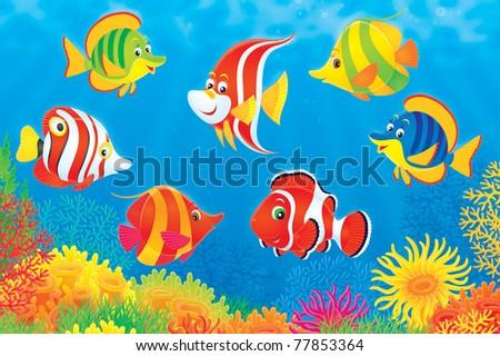 underwater scene of co...