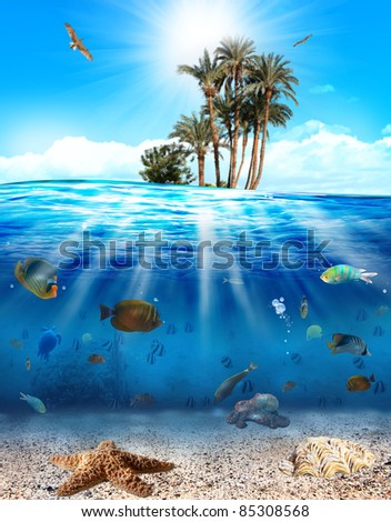 Underwater scene with fishes and seashell - stock photo