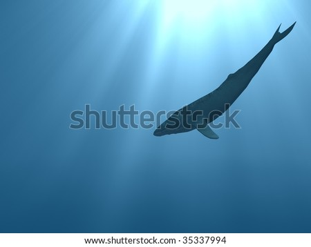 underwater sea with whale silhouette on background. sunlight rays coming trough - stock photo