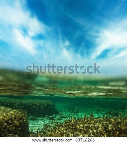 Underwater shot - stock photo