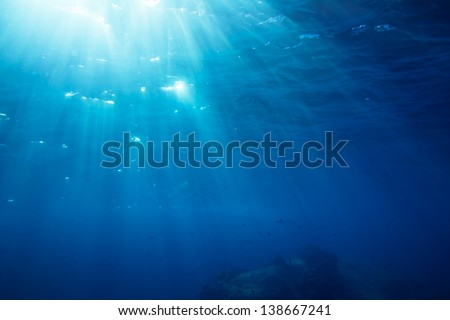 Underwater shot with sunrays and fishes in deep tropical sea - stock photo