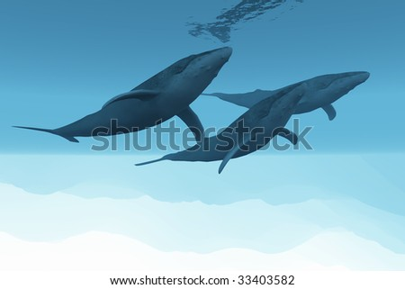 UNDERWATER WORLD - Three Humpback whales swim together in the vast open ocean. - stock photo