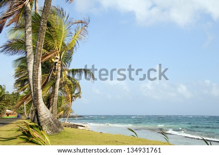 undeveloped Sally Peach beach palm trees on Caribbean Sea with native building Big Corn Island Nicaragua Central America - stock photo
