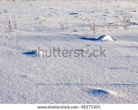 Uneven snow surface with dry grass on sunny winter day