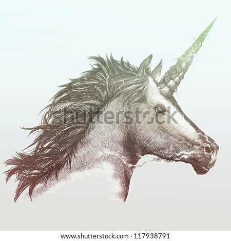 Unicorn - stock photo