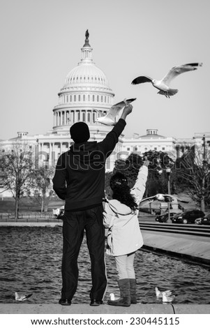 Unidentified dad and daughter feed the seagulls in front of the reflection pool of Capitol  Building - Washington DC, USA - stock photo