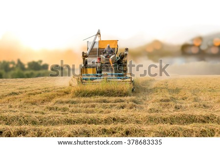 Unidentified man with Harvester machine to harvest rice field working in Thailand - stock photo