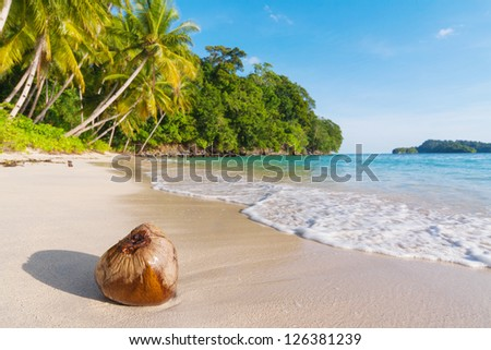 Uninhabited island in the national park Shendravasih in north-west of New Guinea - stock photo