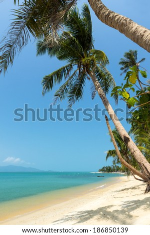 Uninhabited Maenam Beach lined with palm trees at Koh Samui, Thailand