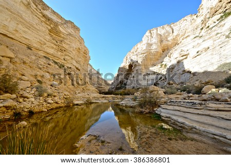 Unique canyon Ein Avdat in the Negev desert.  Southern Israel. - stock photo