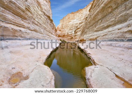 Unique canyon in the desert. Picturesque canyon Ein-Avdat in the Negev desert. Clean cold water in the creek canyon. Sandstone walls apart, like butterfly wings - stock photo