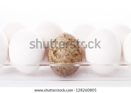 Unique Egg Concept With One Dirty - stock photo