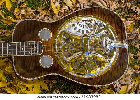Unique guitar lays on the ground with fall leaves - stock photo