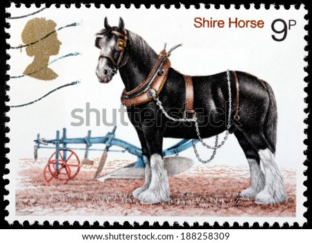 UNITED KINGDOM - CIRCA 1972: A stamp printed by GREAT BRITAIN shows Shire Horse - a breed of draught horse or draft horse. The breed comes in many colors, including black, bay and grey, circa 1972 - stock photo