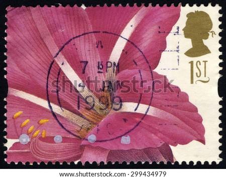 UNITED KINGDOM - CIRCA 1997: A stamp printed in United Kingdom shows 19th Century Flower Painting, Hippeastrum Rutilum (Pierre-Joseph Redoute) , circa 1997 - stock photo