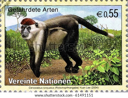 UNITED NATIONS - CIRCA 2004: A stamp printed in United Nations shows Collared mangabey, series, circa 2004