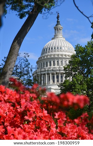 United States Capitol Building in Washington D.C. - stock photo