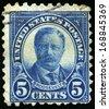 UNITED STATES - CIRCA 1922: Vintage US Postage Stamp celebrating Theodore Roosevelt, the twenty-sixth President of the United States of America, circa 1922. - stock