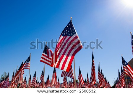 United States Flags displayed as tribute of military veterans in the United States of America - stock photo