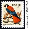 UNITED STATES OF AMERICA - CIRCA 1995: a stamp printed in the USA shows American Kestrel, Falco Sparverius, Falcon, circa 1995 - stock photo
