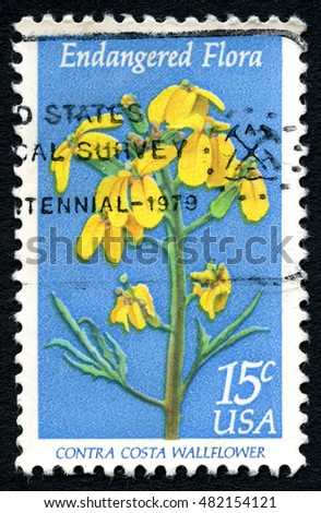 UNITED STATES OF AMERICA - CIRCA 1979: A used postage stamp from the USA, with an illustration of the Contra Costa Wallflower, circa 1979.