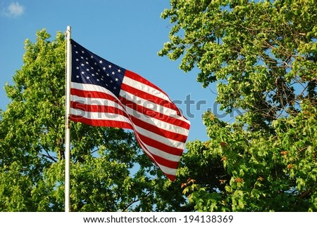 United States of America flag with blue sky and trees in the background  - stock photo