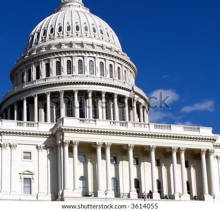 Unites States Capitol in Washington D.C.