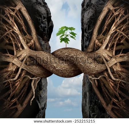 Unity growth concept and bridge the gap business symbol as two tree roots on a high cliff merging together bridging together to form a new sapling as an icon of partnership success and strength. - stock photo