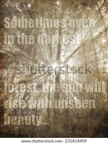 unknown inspirational quote vintage background in dark forest with sunbeams    - stock photo