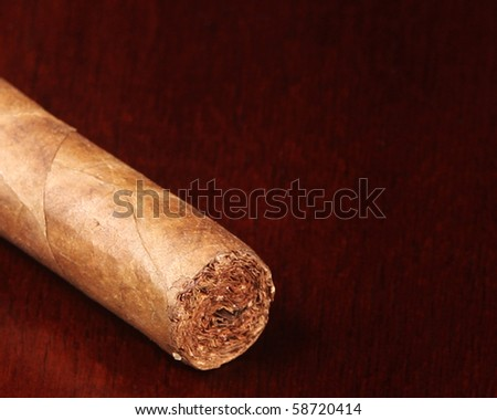 Unlit cigar with copy space - stock photo