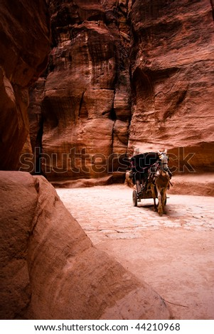 Unrecognizable bedouin drives carriage in canyon in Petra, Jordan. - stock photo