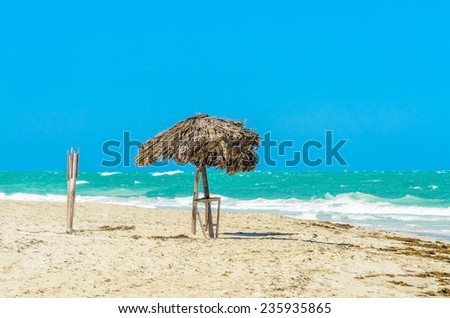 Untouched tropical beach - stock photo