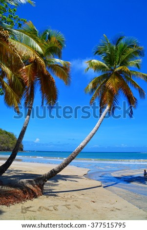 Untouched tropical beach in Grenada, Caribbean
