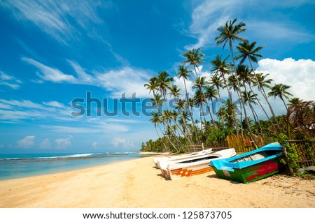 Untouched tropical beach with palms and fishing boats in Sri-Lanka - stock photo