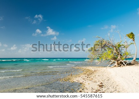 Untouched view of blue lagoon with turquoise water, white sandy beach, blue sky with white clouds and tropical  wild trees in French Polynesia.